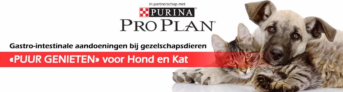 """Gastro-intestinale aandoeningen bij gezelschapsdieren : """"PUUR GENIETEN"""" voor Hond en Kat (Izegem)"""