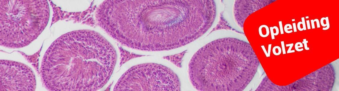Cyclus in cytologie - Editie 3