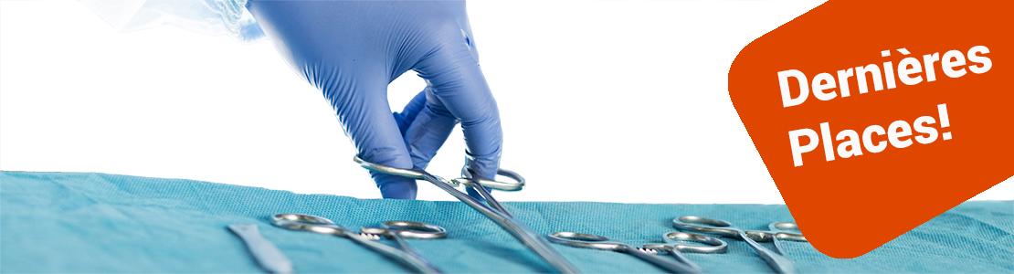 Chirurgies du tractus urinaire et gestion chirurgicale des hernies périnéales