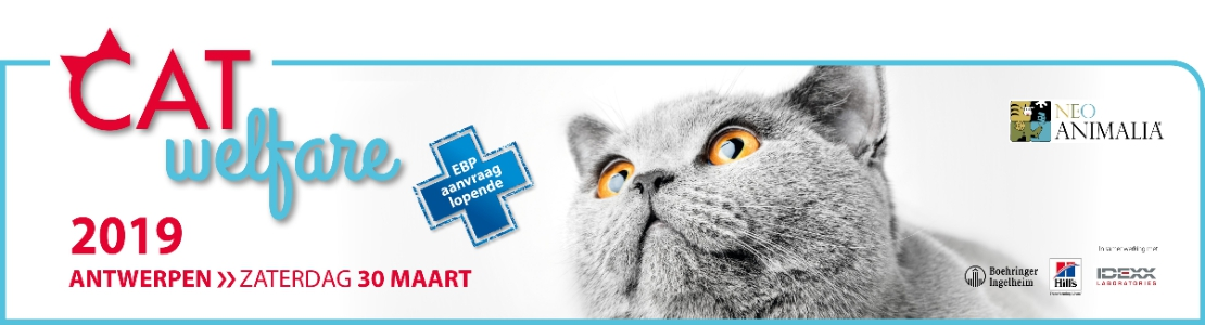 Cat Welfare 2019 Antwerpen